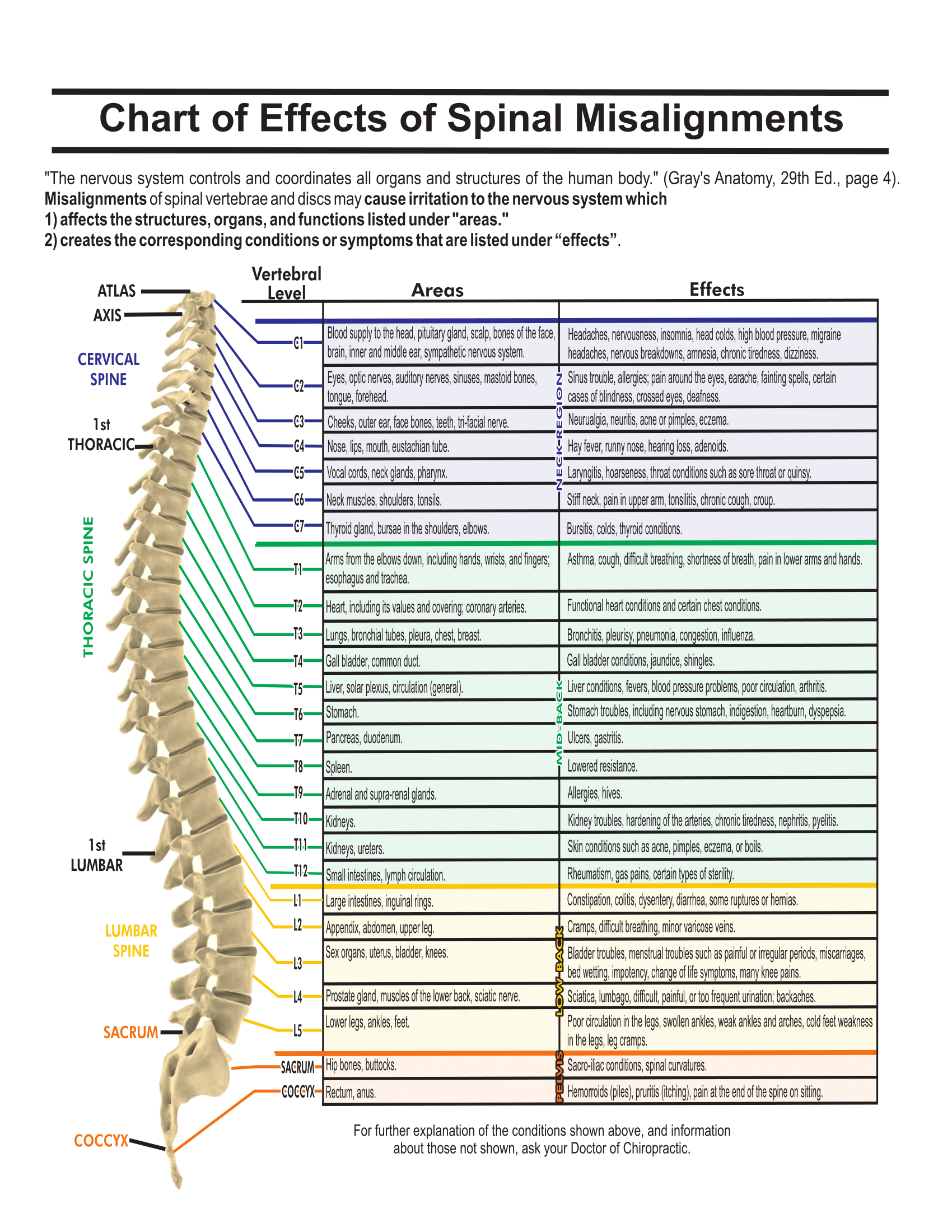 Chart of effects of spinal misalignment healing hands wellness centre